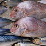 CAMACÃ: TCM condena ex-prefeito a devolver R$ 14 mil por compra irregular de peixe para distribuição na Semana Santa